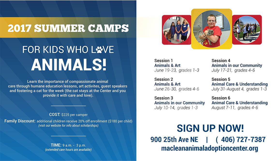 Summer Camp - Screen Ad